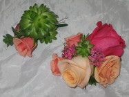 Succulent Corsage and Boutonniere from Aladdin's Floral in Idaho Falls