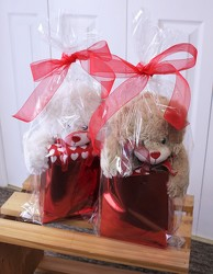 Big Bear Gift Bag from Aladdin's Floral in Idaho Falls