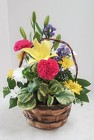Flower Basket with Plant from Aladdin's Floral in Idaho Falls