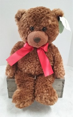 Spencer Teddy Bear from Aladdin's Floral in Idaho Falls