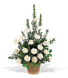 White Carnation Basket from Aladdin's Floral in Idaho Falls