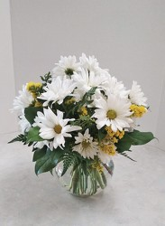 Upsy Daisies from Aladdin's Floral in Idaho Falls