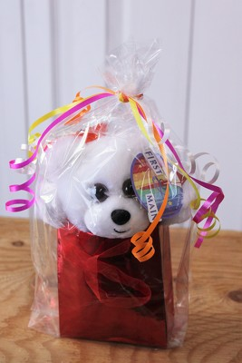 Small Bear Gift Bag from Aladdin's Floral in Idaho Falls